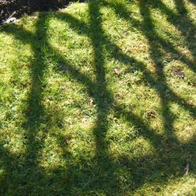 ebay & shadows 011