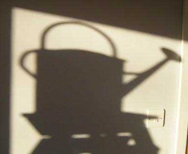 ebay & shadows 028